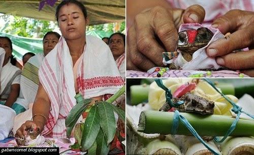Ritual Pelik Panggil Hujan Dua Katak Berbeza Kampung Dikahwinkan Dengan Meriah