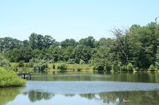 2 Waterfront lots with acreage - Oak Leaf Estates subdivision