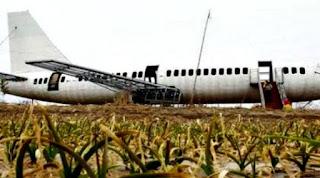 Replika Pesawat Boeing 737 karya Wwang Lanqun