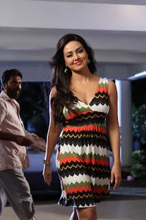 sana khan  stills in gajjala gurram movie(11).JPG