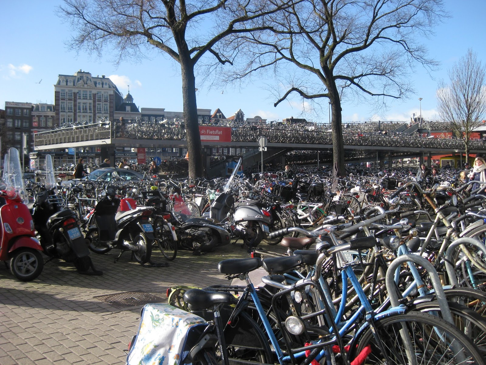 ... : 自転車王国オランダ探訪