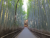 竹林の小路の右側が正門。