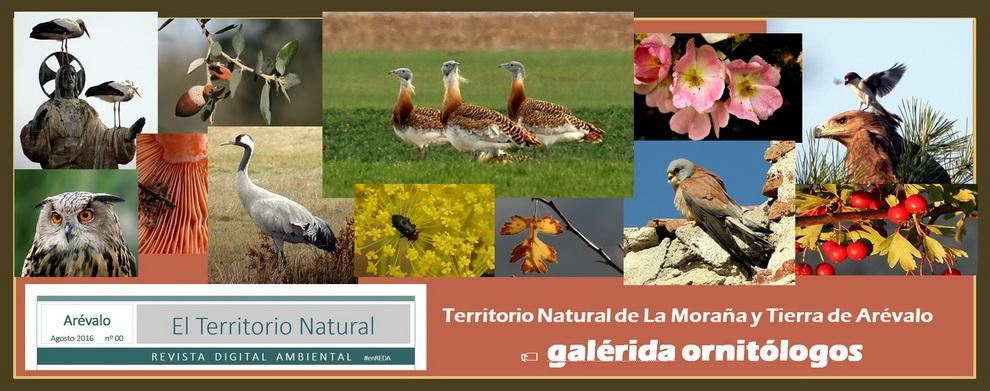TERRITORIO NATURAL