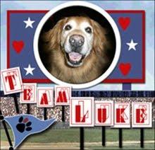 Team Luke