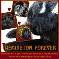 REMINGTON WE LOVE YOU