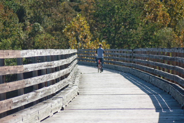 Bike riding on wooden bridge