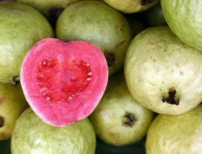 Hubungan Jambu Biji Dan Kolesterol