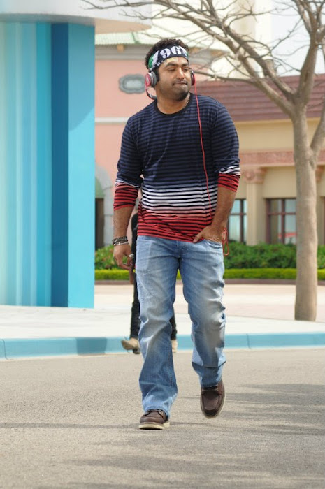 Oosaravelli Movie Stills, Junior Ntr Tamanna Photos From Oosaravelli cinema gallery