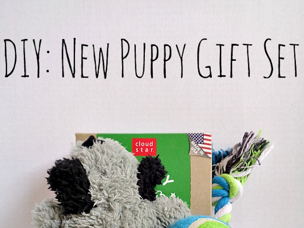 DIY: New Puppy Gift Set