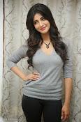 Shruti Haasan Gorgeous Photos at Yevadu Success Meet-thumbnail-7