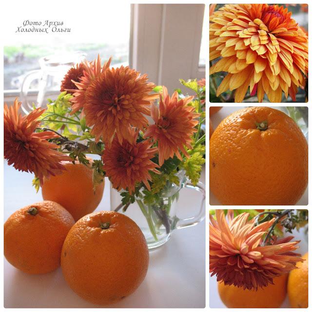 Апельсиновые хризантемы