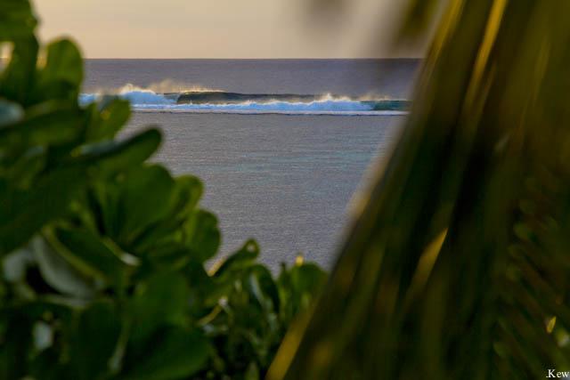 photo de surf 8902