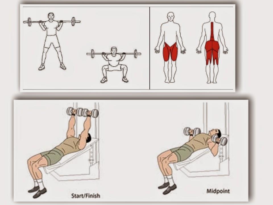 hva er styrketrening