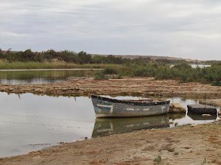 We zijn op weg naar National Park of Souss Massa bij Sidi Benzarne, een dorpje met ongeveer 800 inwoners.