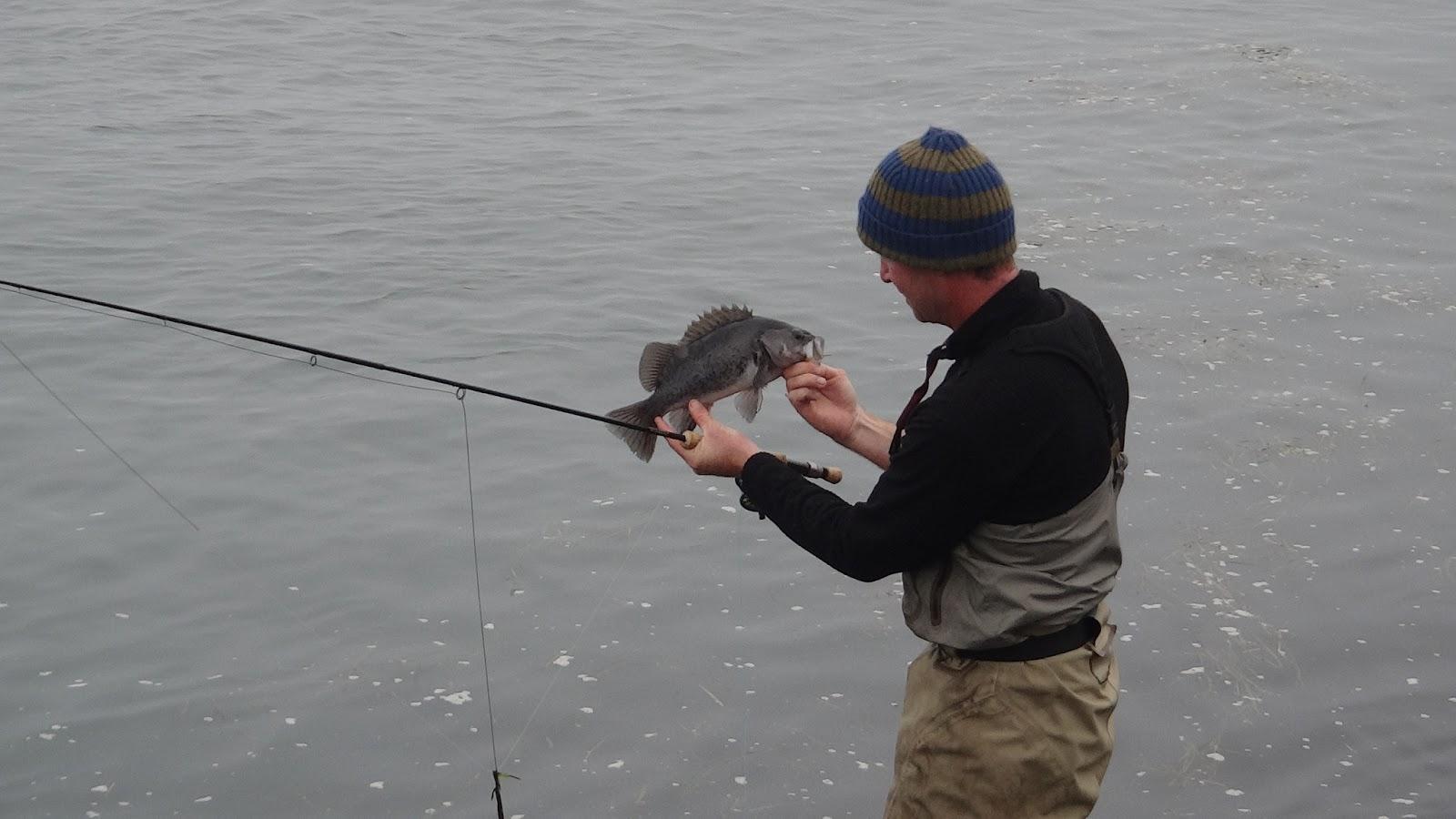 Brian marz 39 s fly fishing oregon blog ff301 rockfish for Jetty fishing oregon