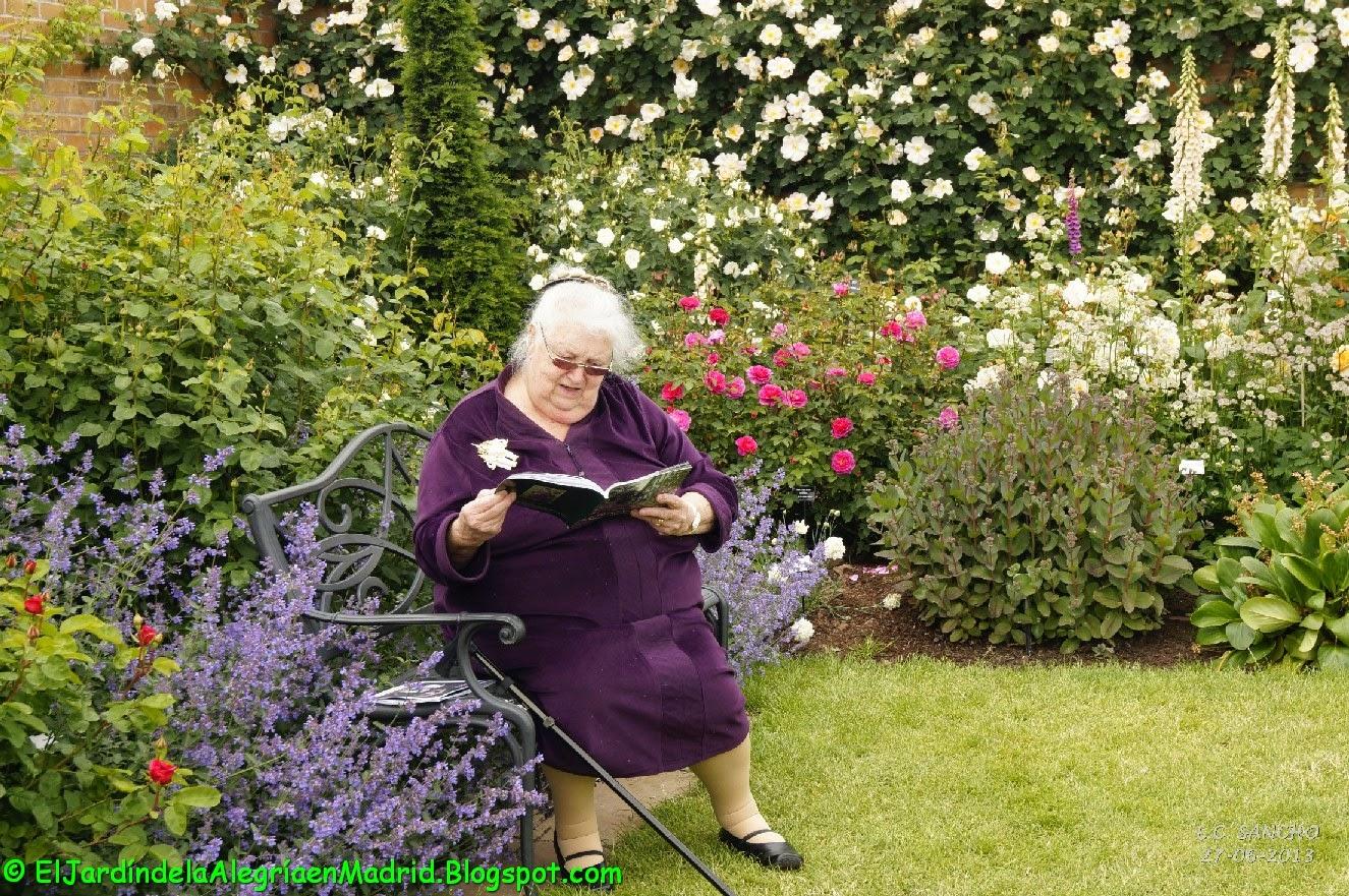 El jardín de la alegría : Rosas y rosales ingleses de David Austin ...