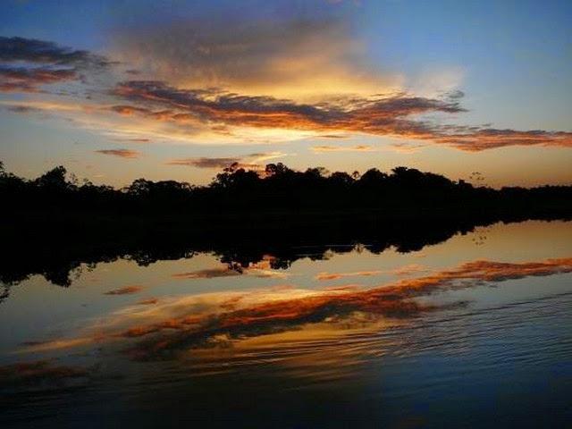 11. Amazon Rain Forest (Manaus, Brazil)