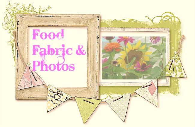Food Fabric and Photos