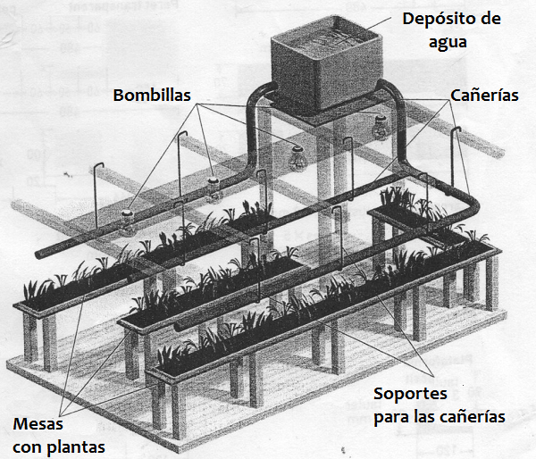 Construir Un Invernadero Montaje Guia De Jardin