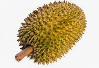 Manfaat dan khasiat buah durian