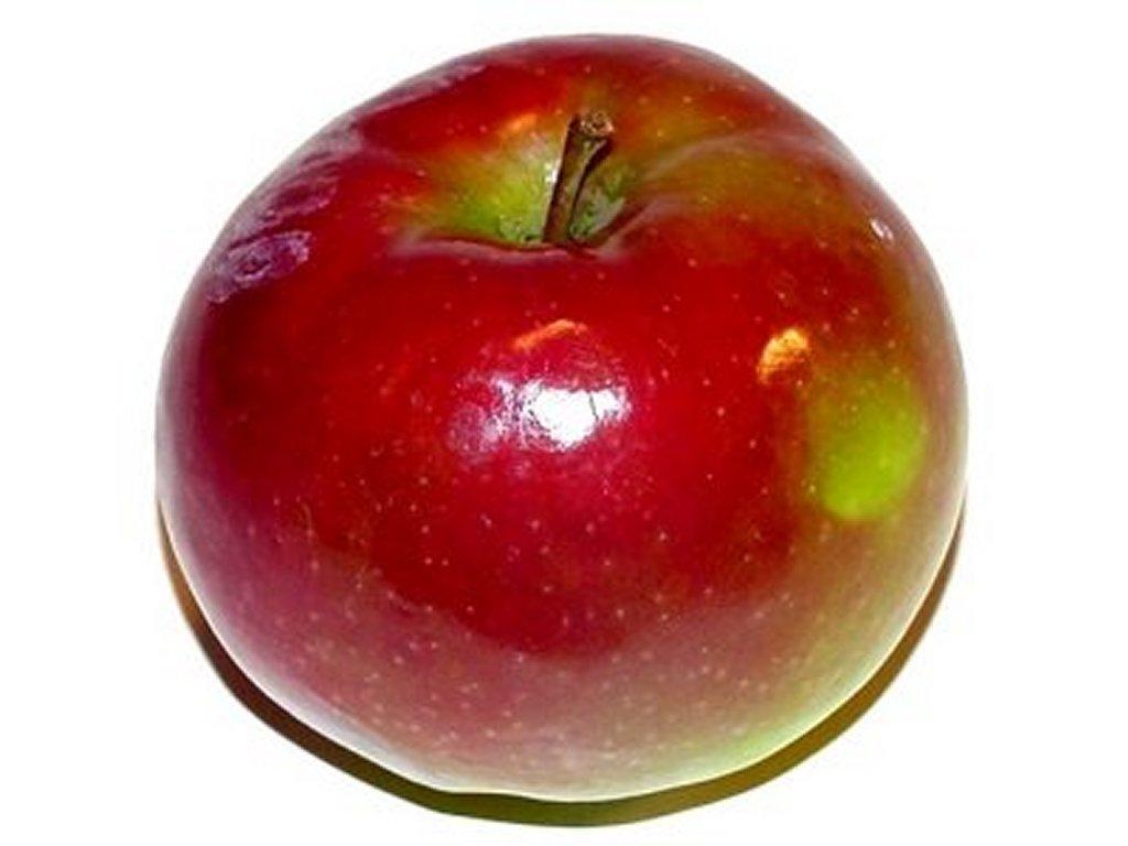 apple before we downlo...