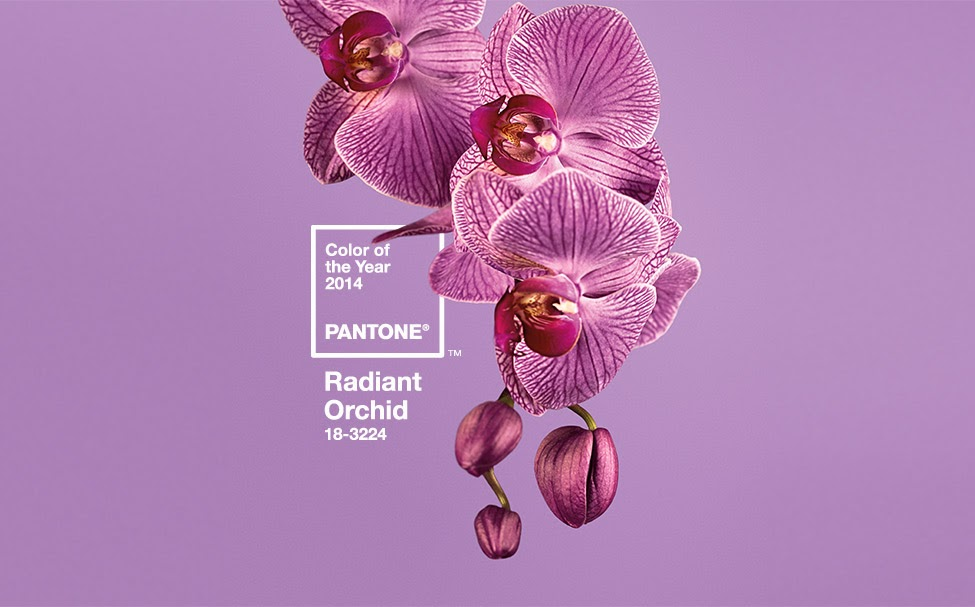 Warna tahun 2014 Radiant Orchid Color of the Year 2014