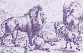 La capretta, la pecora, la vacca e il leone (Fedro)