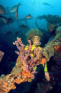 Aruba-bajo-agua