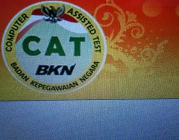 Tampilan CAT CPNS BKN