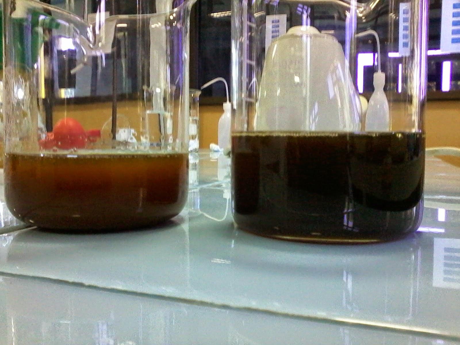 pemurnian minyak jelantan dengan arang tempurung