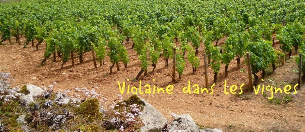 Violaine dans les vignes