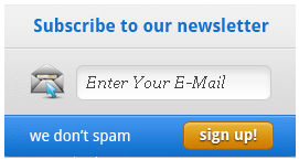 Newsletter Form Style 1