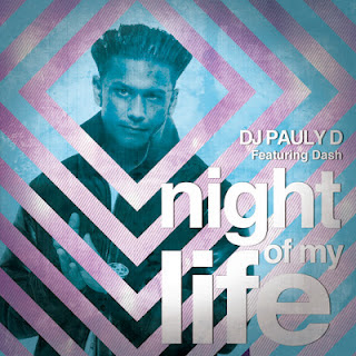 DJ Pauly D - Night Of My Life
