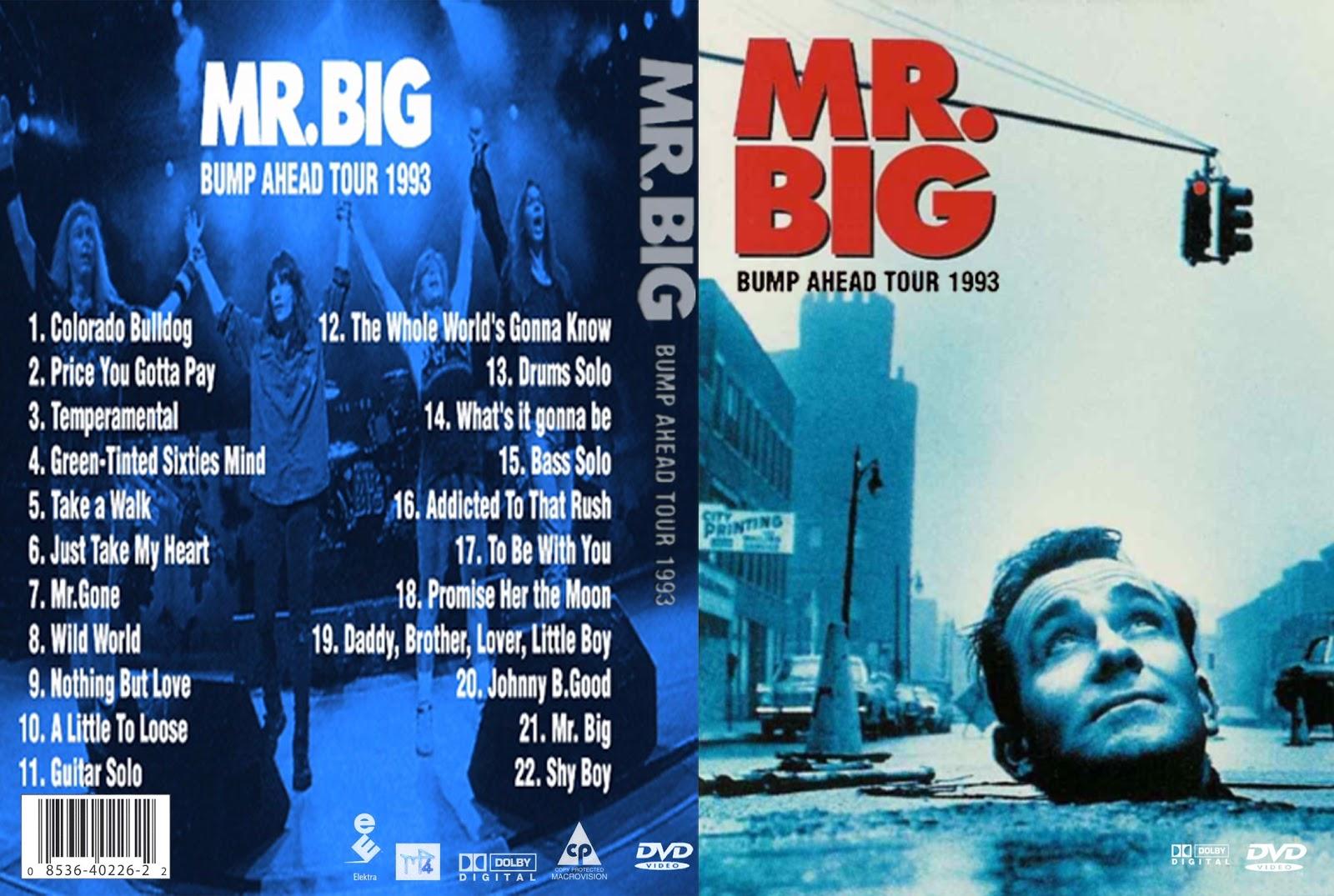 mr big lean into it pdf