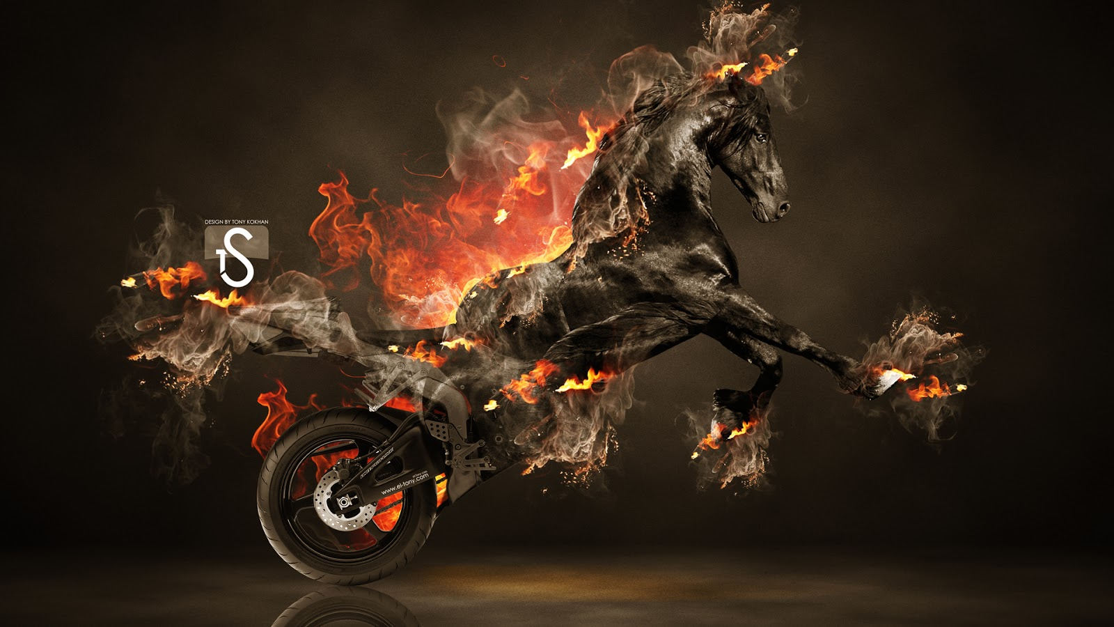 Hot black horse on fire horse high resolution wallpapers