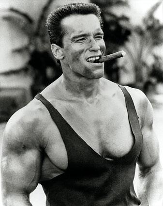 arnold schwarzenegger workout. arnold schwarzenegger