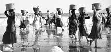 Η ιστορία των αλυκών της Λευκάδας