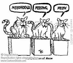 "Evolution of the Cat's ""Meow"""