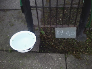 Dog Water Bowl with Cute Sign saying K9 H2)