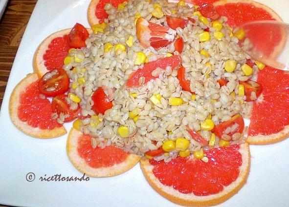 Insalata d'orzo con fagioli e succo d'arancia, ricetta semplice