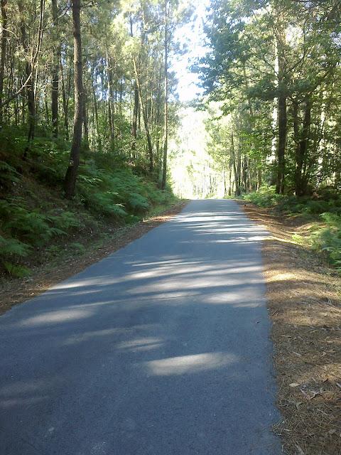 carretera en la pista de senderismo san lois noia
