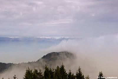 Valea Oltului vazuta de pe Varful Cozia