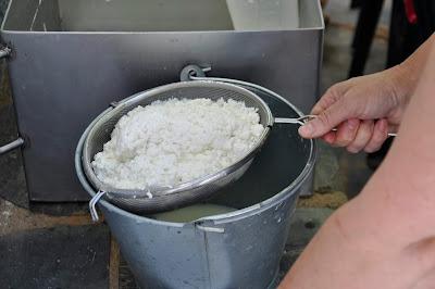 Proceso de elaboración del queso de cabra