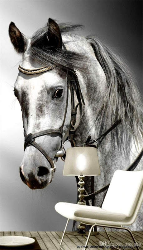 Modern White Horse Wall Mural HD Photo Wallpaper Custom Large Size