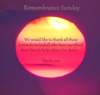 Remembrance - giving thanks to all animals who have sacrificed their lives to help others live theirs - - - thank you.