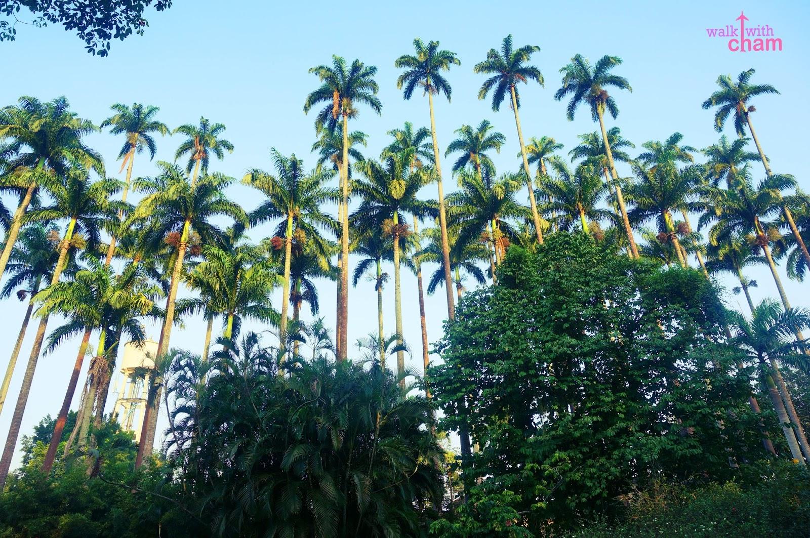 how to get to jardim botanico rio de janeiro