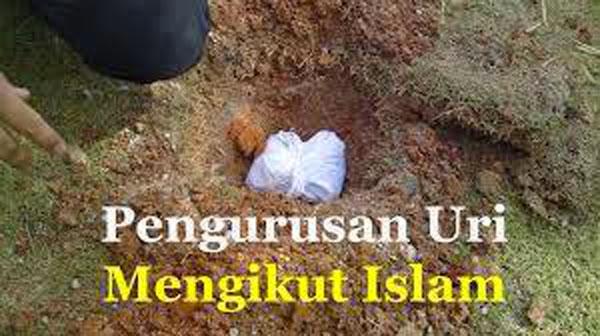 Pengurusan Uri Bayi Mengikut Islam