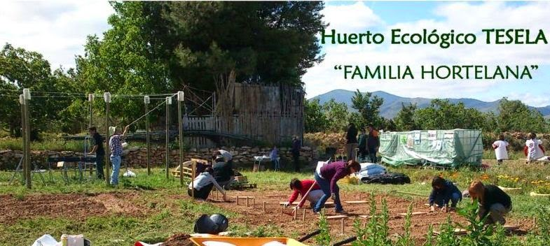 "Huerto Ecológico TESELA. Proyecto ""FAMILIA HORTELANA"""