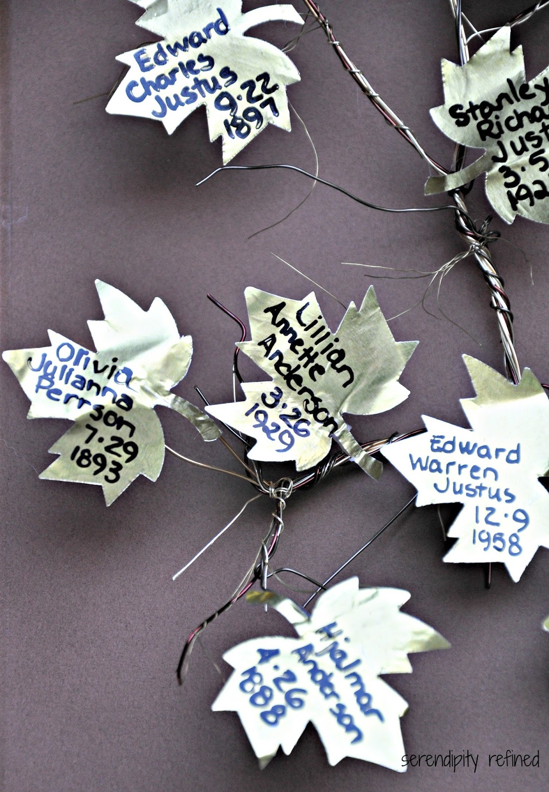 Serendipity Refined Blog: How to Make A Four Generation Family Tree