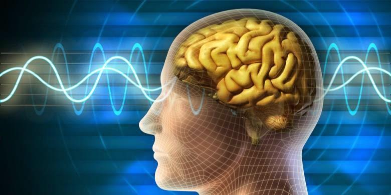 Peneliti Temukan Sumber Rasa Sakit di Otak